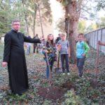 Pál atyával néhány fát ültettek el a templomkertben
