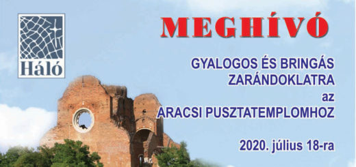 plakat-aracs-2020-2